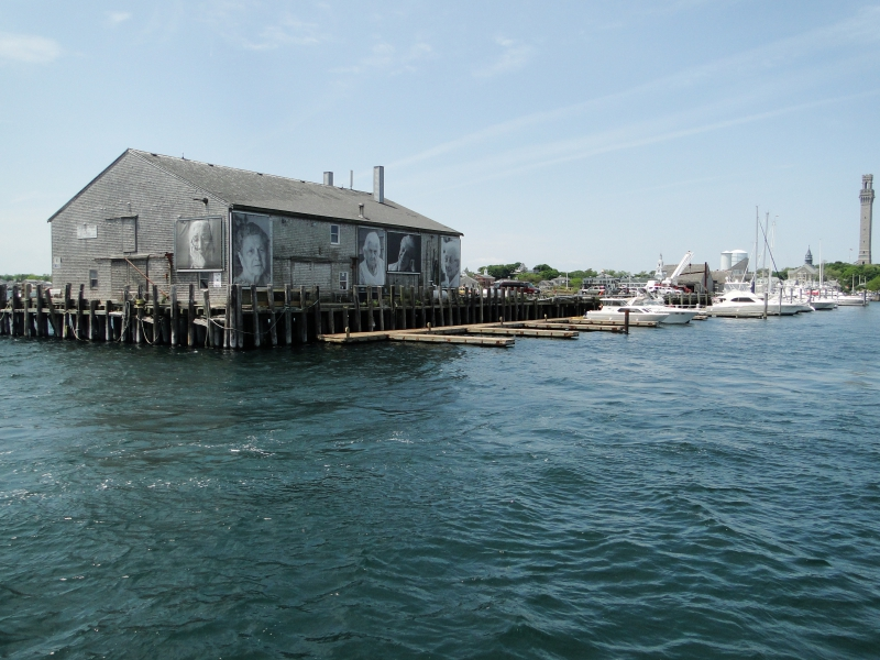 Marina in Provincetown