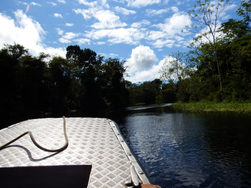 Aria Excursion Skiff on Amazon River