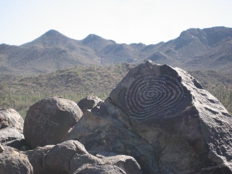 Rock Art Saguaro National Park