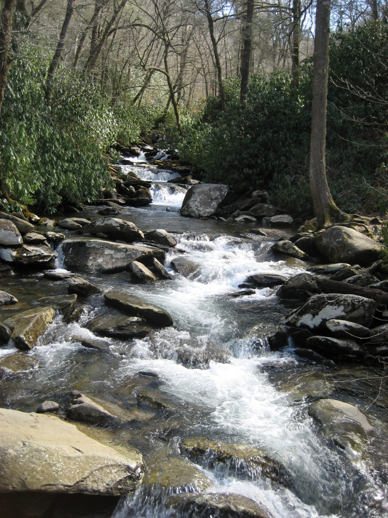 Stream Along Appalachian Trail